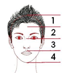 tipos de rostro pelo largo